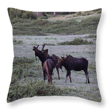 Moose Cameron Pass Co Throw Pillow