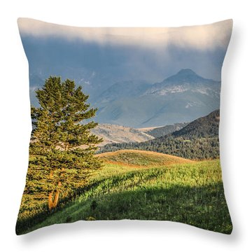 #0613 - Absaroka Range, Paradise Valley, Southwest Montana Throw Pillow