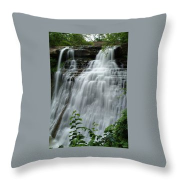 071809-314 Throw Pillow by Mike Davis
