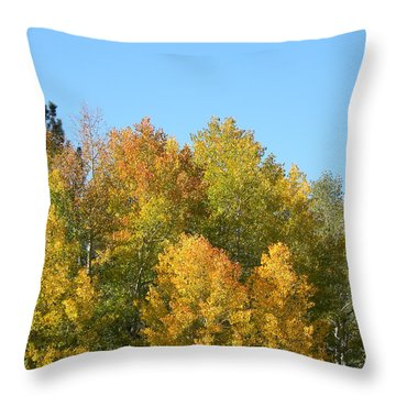 Throw Pillow featuring the photograph Fall In Divide Co by Margarethe Binkley