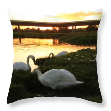 09.09.09....under The Bridge Throw Pillow by Martina Fagan