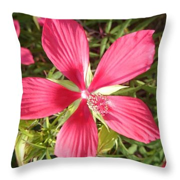 Hibiscus Coccineus Throw Pillow