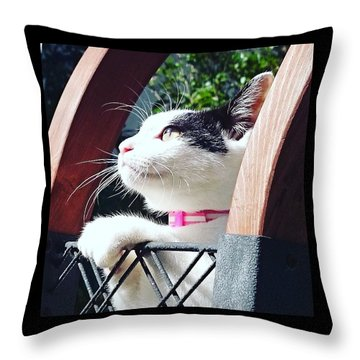 Koneko Means A Kitten Throw Pillow