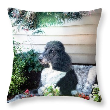 28 Throw Pillow