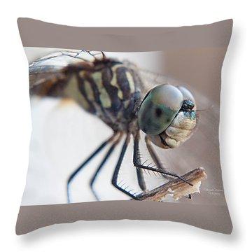 A Closer Look Throw Pillow