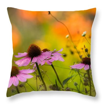 Coneflower Symphony Throw Pillow by Mary Amerman