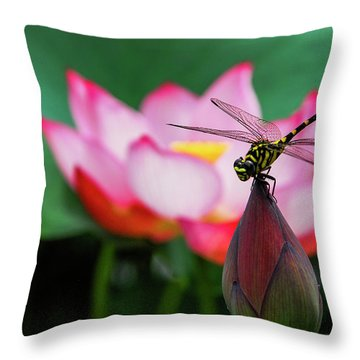 A Dragonfly On Lotus Flower Throw Pillow