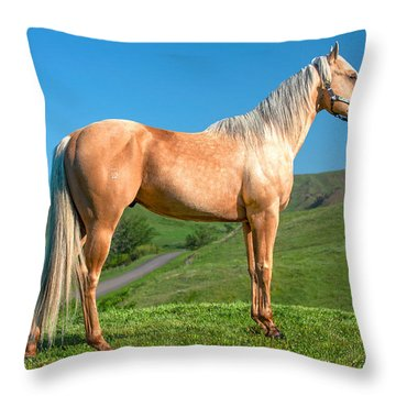 A Horse Named Shaker Throw Pillow
