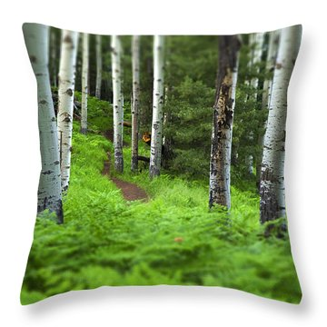 A Magic Place Throw Pillow by Sue Cullumber