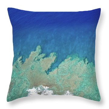 Abstract Aerial Reef Throw Pillow