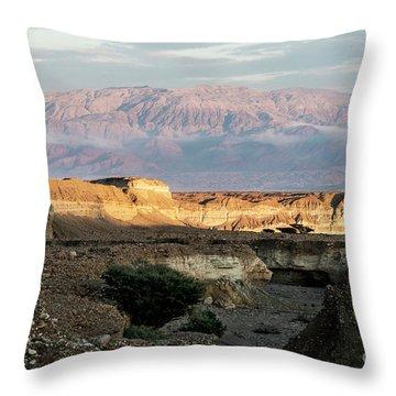 After Rain Colors 02 Throw Pillow