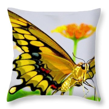 Afternoon Sip Throw Pillow