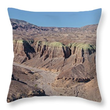 Throw Pillow featuring the photograph Afton Canyon by Jim Thompson
