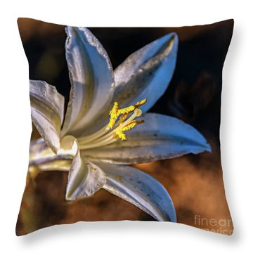 Throw Pillow featuring the photograph Ajo Lily by Robert Bales