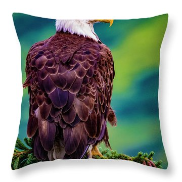 Alaska Bald Eagle Throw Pillow