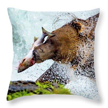 Throw Pillow featuring the photograph Alaska Brown Bear by Norman Hall