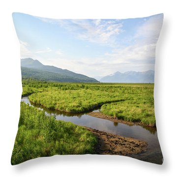Alaskan Valley Throw Pillow