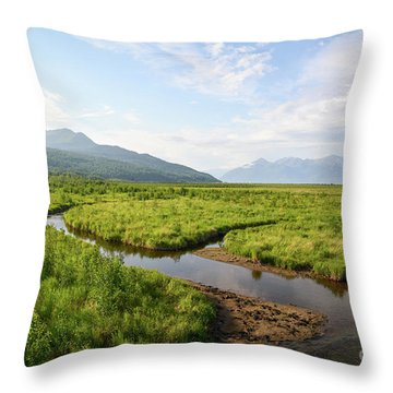 Alaskan Valley Throw Pillow