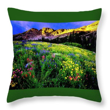 Throw Pillow featuring the photograph Albion Basin by Norman Hall