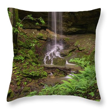 Alcorn Falls. Throw Pillow by Ulrich Burkhalter