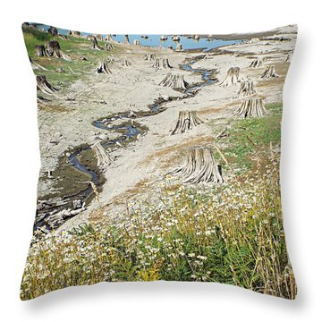 Alder Lake Stumps Throw Pillow