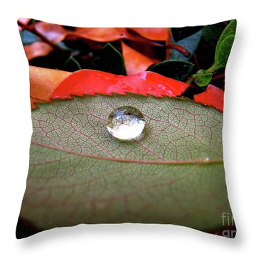 Throw Pillow featuring the photograph All Aboard by CML Brown