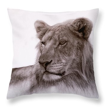 All Grown Up Throw Pillow
