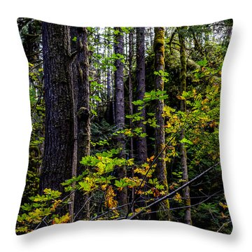 All Lit Up Throw Pillow