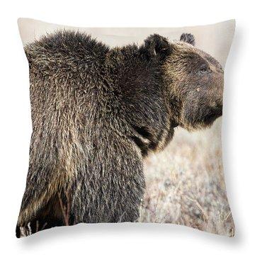 All Seems Beautiful Throw Pillow by Scott Warner