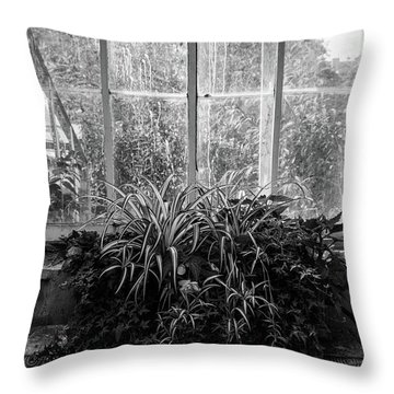 Allan Gardens Throw Pillow