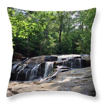 Allatoona Falls Throw Pillow