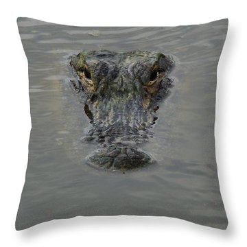 Alligator One Throw Pillow by Bruce W Krucke