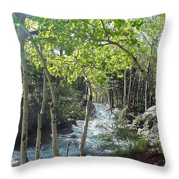 Along Alberta Falls Trail Rocky Mountain National Park Throw Pillow