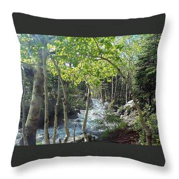 Along Alberta Falls Trail Rocky Mountain National Park Throw Pillow