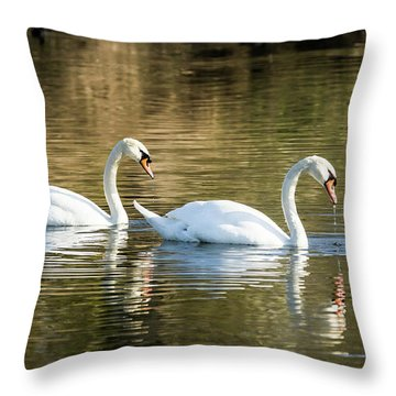 Always Together Wildlife Art By Kaylyn Franks Throw Pillow