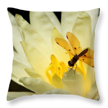 Amber Dragonfly Dancer 2 Throw Pillow