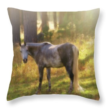 Ambient Grace Throw Pillow