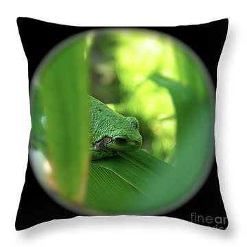 Ambiguous Throw Pillow by Sue Stefanowicz
