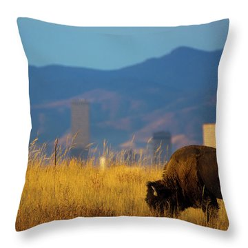 American Bison And Denver Skyline Throw Pillow