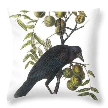Audubon Throw Pillows