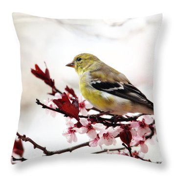 American Goldfinch In Spring Throw Pillow