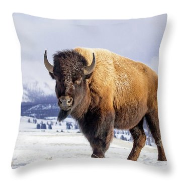 American Legend Throw Pillow by Jack Bell