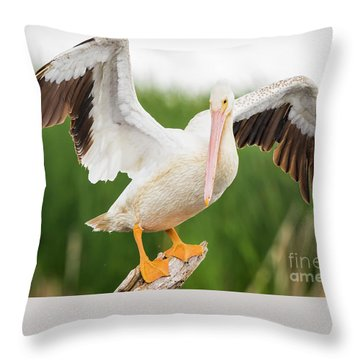 Throw Pillow featuring the photograph American White Pelican  by Ricky L Jones