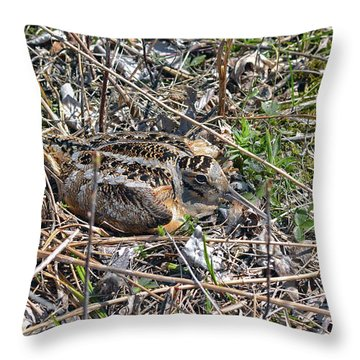 American Woodcock Incubating Her Chicks Throw Pillow