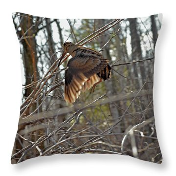 American Woodcock's Flight When She Has Chicks Throw Pillow