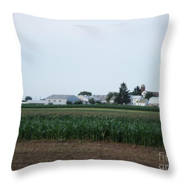 Amish Homestead 9 Throw Pillow