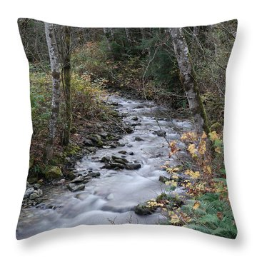 Throw Pillow featuring the photograph An Autumn Stream by Jeff Swan