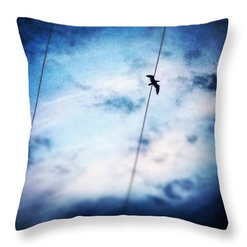 #animals #animal #tagsforlikes.com Throw Pillow by Jason Michael Roust