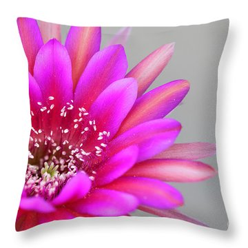 Antimatter Attacks The Desert Throw Pillow