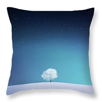Apple Throw Pillow by Bess Hamiti